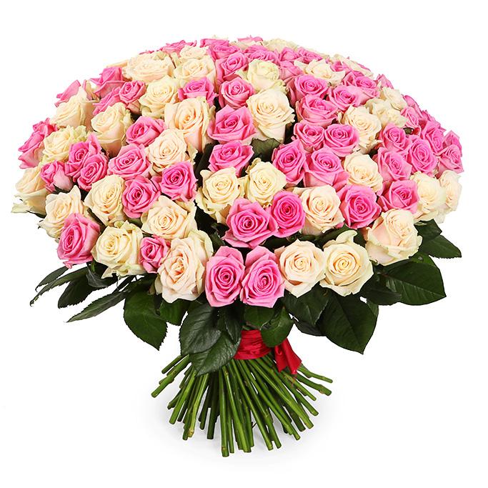 Букет из 75 белых и розовых роз